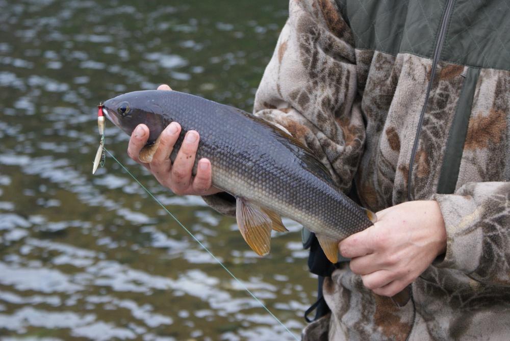 Рыбалка на Камчатке Часть 2